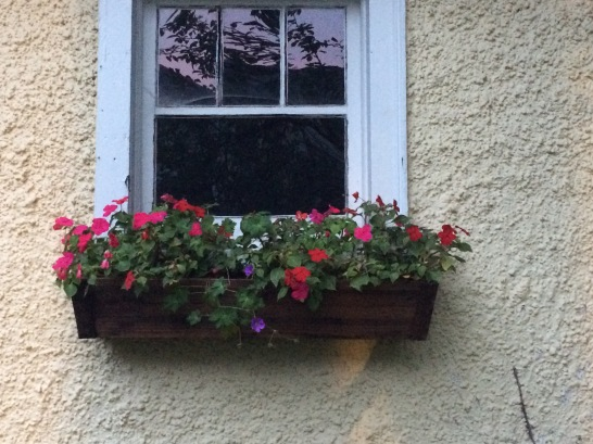 Window box with flowers.