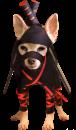 Ninja-Chihuahua.png